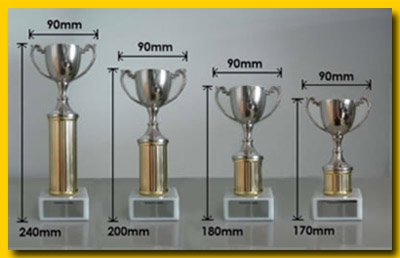 trophies china